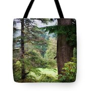 Natural Magnetism. Scotland Tote Bag by Jenny Rainbow
