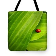 Naturellement Complementaire Tote Bag by Aimelle