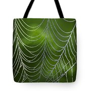 Nature's Best Green Abstract Art Tote Bag by Christina Rollo