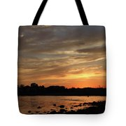 Nature's Created Colors Tote Bag by Karol Livote