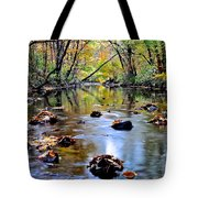 Natures Mood Lighting Tote Bag by Frozen in Time Fine Art Photography