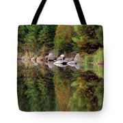 Natures Reflection Tote Bag by Mark Papke