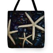 Nautical Sea Stars Tote Bag by Paul Ward