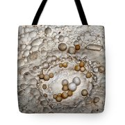 Nest Of Cave Pearls Tote Bag by Melany Sarafis