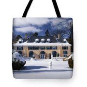 No One Home Tote Bag by Joan Carroll