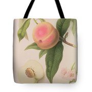Noblesse Peach Tote Bag by William Hooker