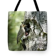 Northern Flicker Nest Tote Bag by Christina Rollo