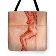 Nude 5 Tote Bag by Patrick J Murphy