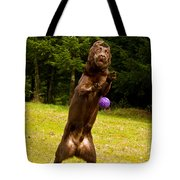 Nute And The Ball Tote Bag by Jean Noren