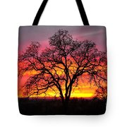 Oak Silhouette Tote Bag by Cheryl Young