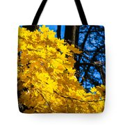 October Blues 10 - Square Tote Bag by Alexander Senin