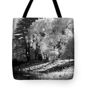 Off the Beaten Path Tote Bag by Luke Moore