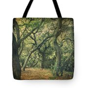 Oh How They Danced Tote Bag by Laurie Search