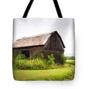 Old Barn On Seneca Lake - Finger Lakes - New York State Tote Bag by Gary Heller
