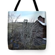 Old Grain Barn Tote Bag by Steve McKinzie