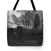 Old Liberty Park Ruins In Spokane Washington Tote Bag by Daniel Hagerman