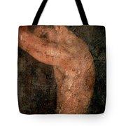 Old Story Tote Bag by Mark Ashkenazi
