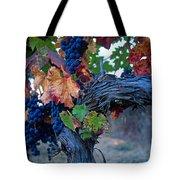 Old Vine Tote Bag by Kathy Yates