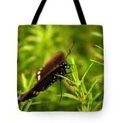 On A Rainy Day Tote Bag by Lois Bryan