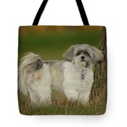 On Point Tote Bag by Arthur Fix