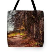 On The Bank Of River Volga Tote Bag by Jenny Rainbow