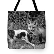 On The Scent Monochrome Tote Bag by Steve Harrington