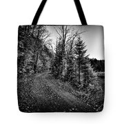 On The Way To Cary Lake Tote Bag by David Patterson
