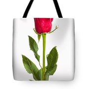 One Red Rose Tote Bag by Adam Romanowicz