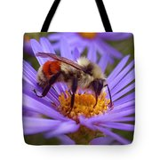 Orange-banded Bee Tote Bag by Rona Black