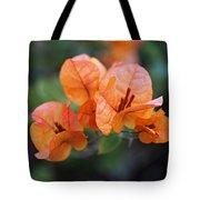 Orange Bougainvillea Tote Bag by Rona Black