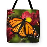 Orange Drift Monarch Butterfly Tote Bag by Christina Rollo