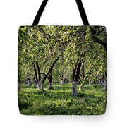 Orchard Tote Bag by Anonymous