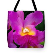 Orchid Variations 1 Tote Bag by Rona Black