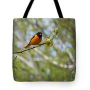 Oriole Tote Bag by Randi Shenkman