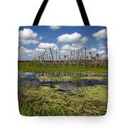 Orlando Wetlands Cloudscape 2 Tote Bag by Mike Reid