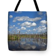 Orlando Wetlands Cloudscape 3 Tote Bag by Mike Reid
