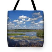 Orlando Wetlands Park Cloudscape 4 Tote Bag by Mike Reid