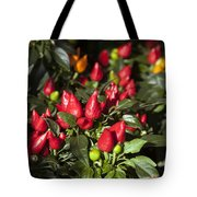 Ornamental Peppers Tote Bag by Peter French