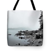 Otter Cliffs Tote Bag by Joann Vitali