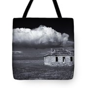 Outback Ruin Tote Bag by Mike  Dawson