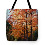 Over The Hill And Through The Trees Tote Bag by Jeff Folger
