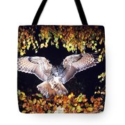 Owl About To Land Tote Bag by Manfred Danegger