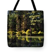 Oxbow Triptych Tote Bag by Peter Piatt