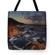 Pacific Coast Golden Light Tote Bag by Mike Reid