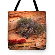 Paintbrush And Juniper Tote Bag by Inge Johnsson