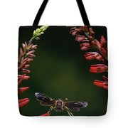 Paper Wasp in Flight Tote Bag by Stephen Dalton