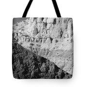 Paria Utah I Tote Bag by Dave Gordon