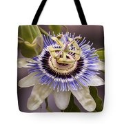 Passiflora Caerulea Tote Bag by Caitlyn  Grasso