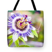 Passiflora Or Passion Flower Tote Bag by Semmick Photo