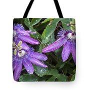 Passion Vine Flower Rain Drops Tote Bag by Rich Franco